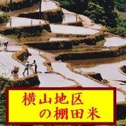 新米 九州長崎県産 掛干し棚田米 5kg(横山地区棚田米)