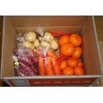 ミカンと根菜類の詰め合わせ