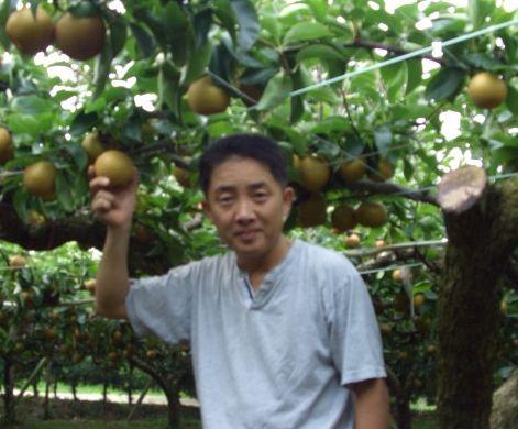 寺道梨園 なし園 EM農法の美味しい梨